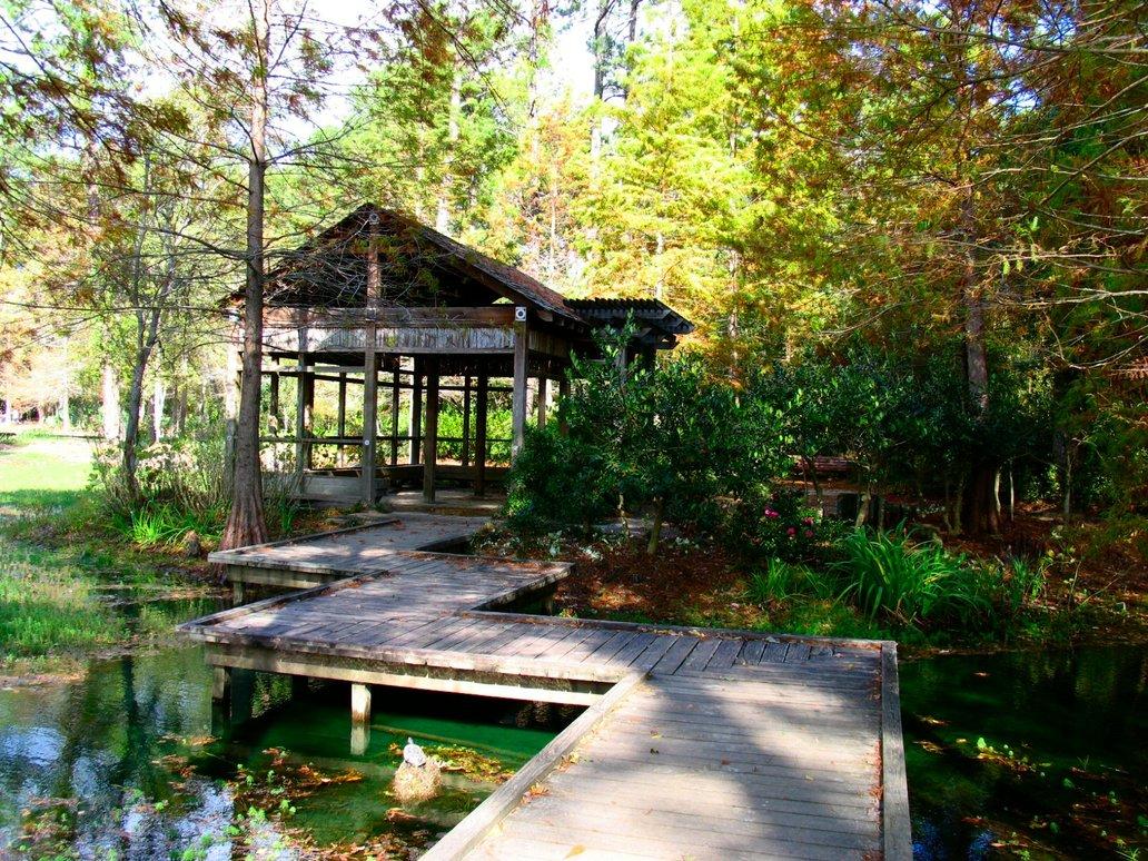 Awesome Japanese Zen Garden