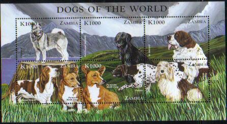 1999年ザンビア共和国 ノルウェジアン・エルクハウンド フラットコーテッド・レトリーバー セント・バーナード バセット・ハウンド ウェルシュ・コーギー・ペンブローク ポインター プチ・バセット・グリフォン・バンデーンの切手シート