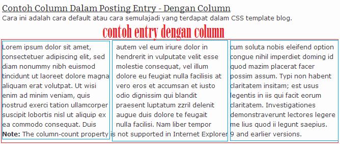 Cara Buat Column Dalam Posting Entry blog