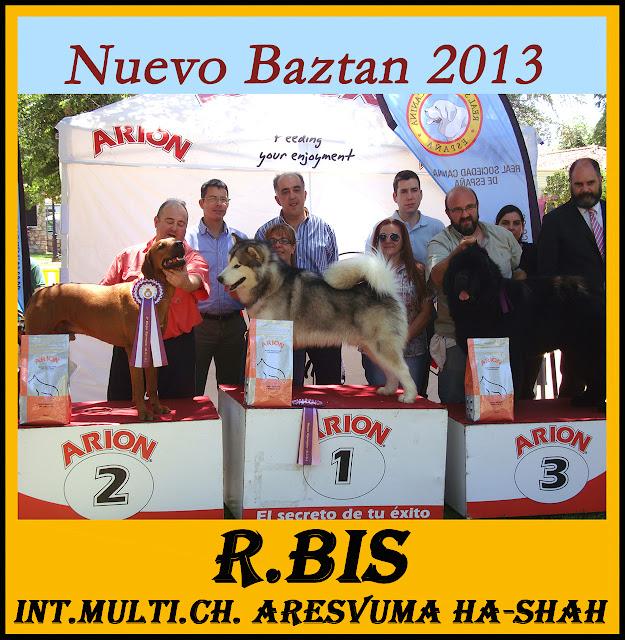 Concurso Nacional Canino Nuevo Baztán 2013. Podium de BIS