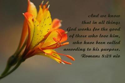 Romans8 28 Bible Quote