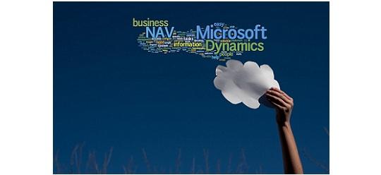 Data Issues in NAV