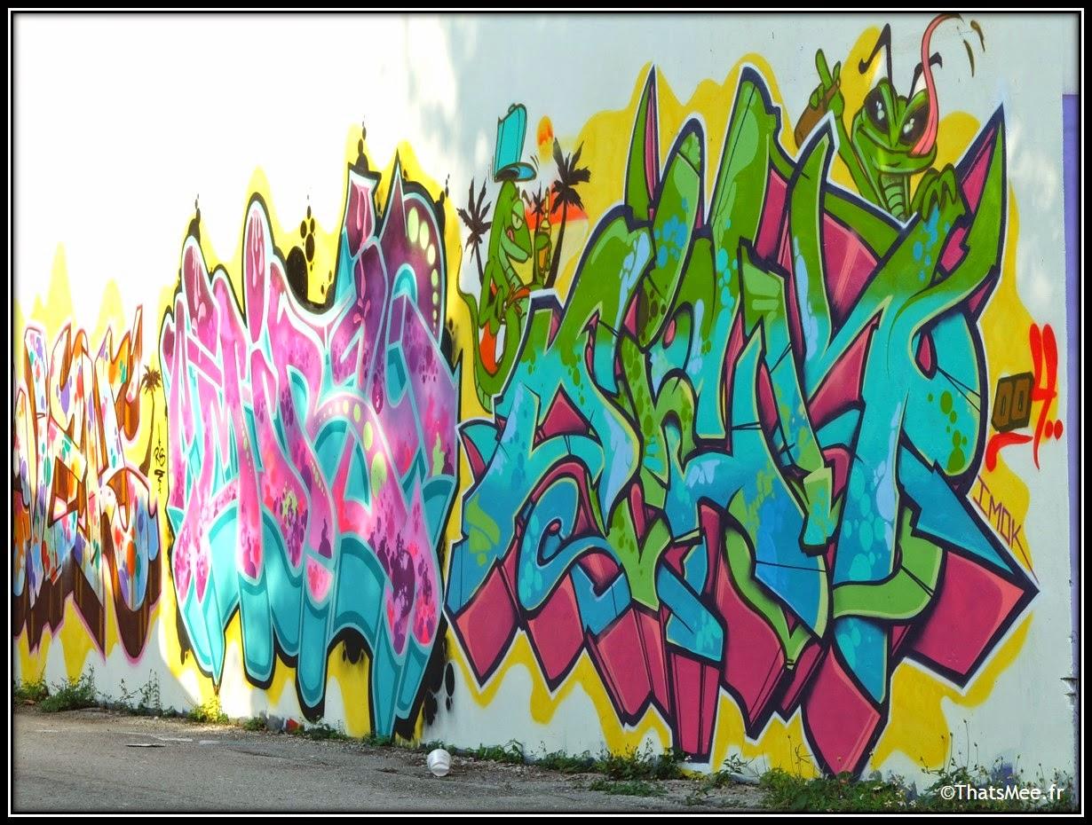 Imok graffitis street art  Wynwood art district, Miami art basel