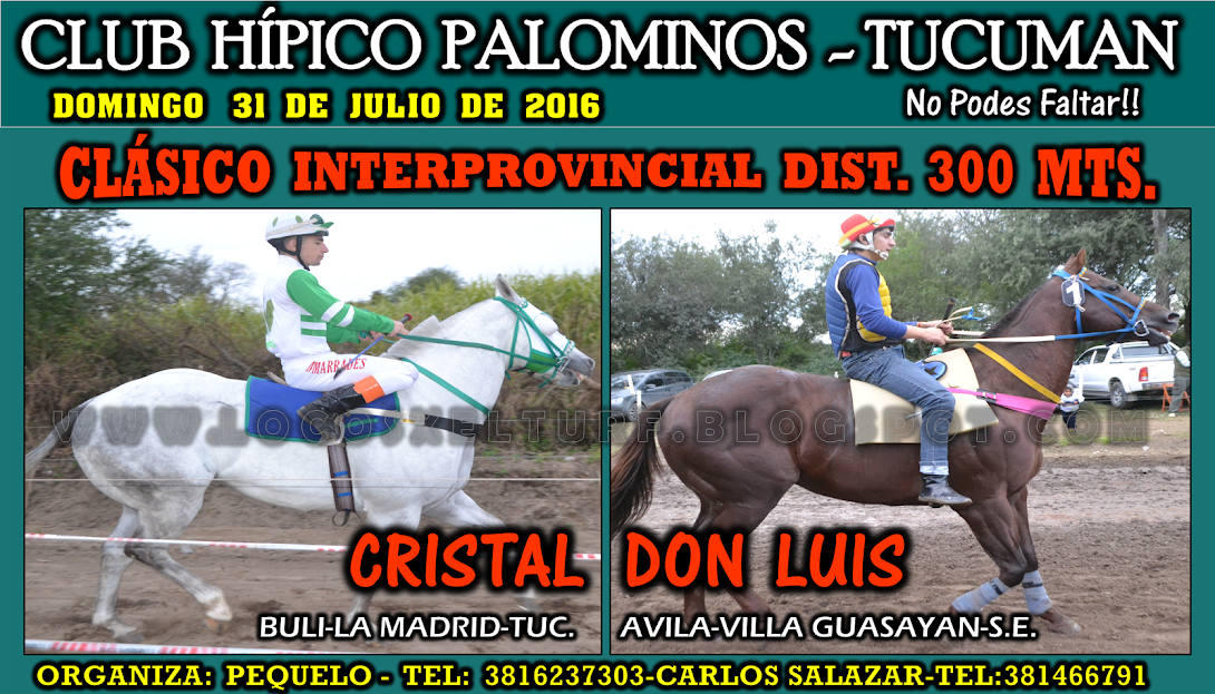 31-07-16-HIP. PALOMINOS-CLAS-1