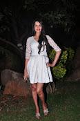 actress kshetra glam pics-thumbnail-15