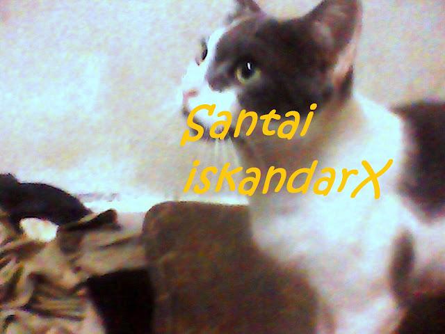 iskandarx.blogspot.com, oh Jeffrydin dalam kenangan kami semua, santai, Jeffrydin