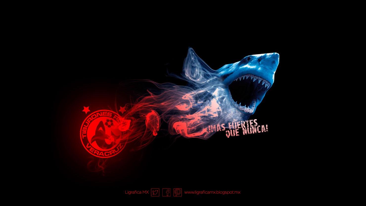264cb273a Fotos de las porristas de los tiburones rojos