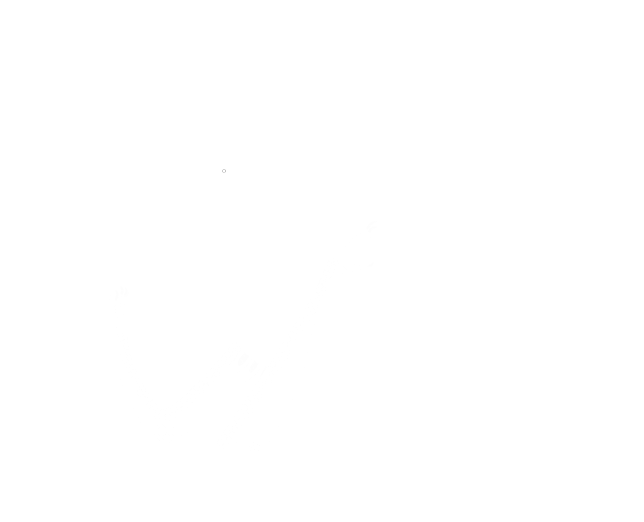 Dragoncyclopedia