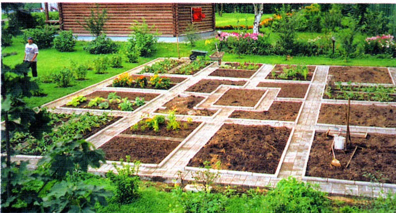 Дизайн огорода своими руками фото