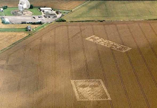 Crop Circle - Alien face and Some sort of Strip Code