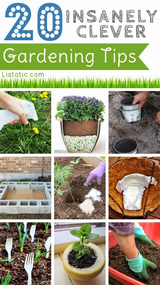 20 insanely clever gardening tips and ideas diy craft projects - Insanely easy clever diy projects home ...