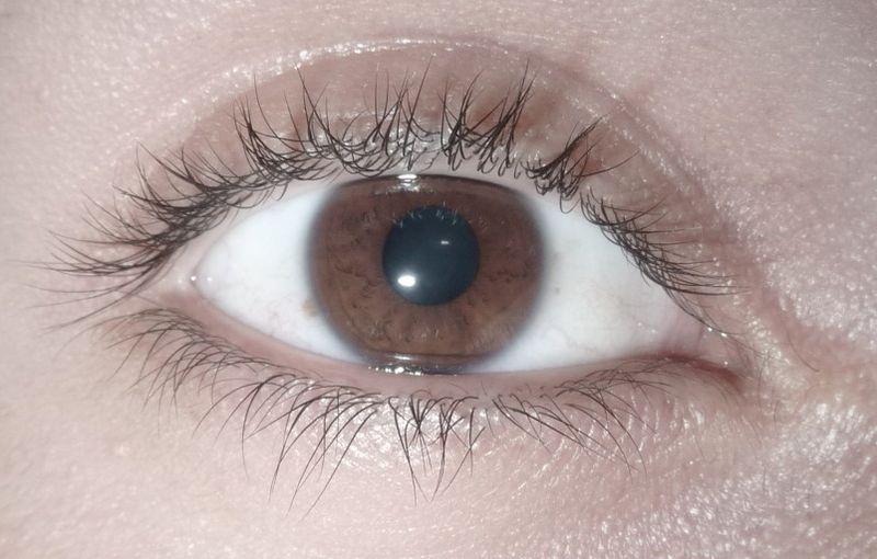 Los tipos de color de ojosOjos Color Miel