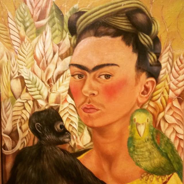 frida-scimmia-pappagallo