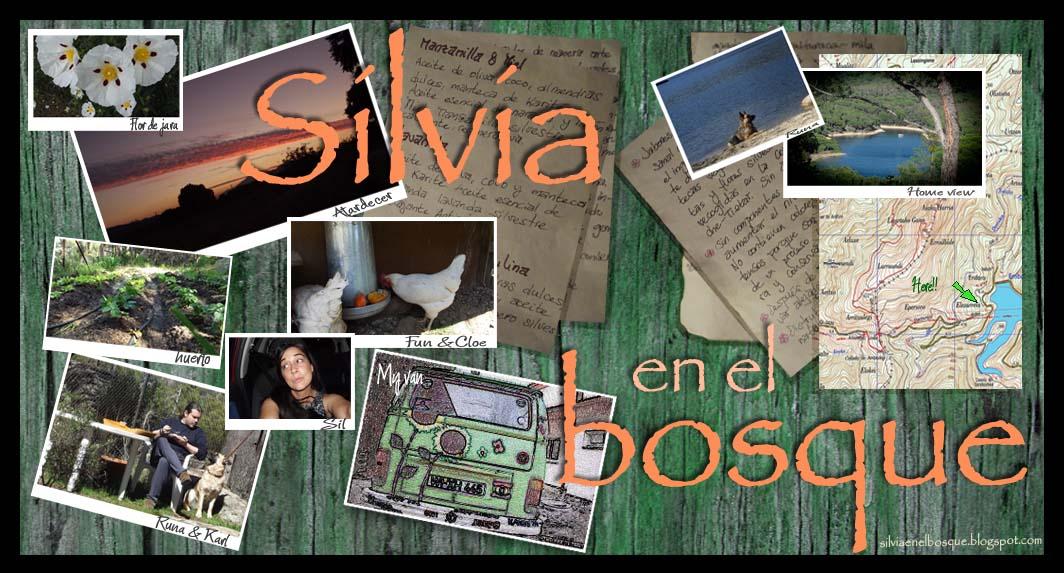 Silvia en el bosque