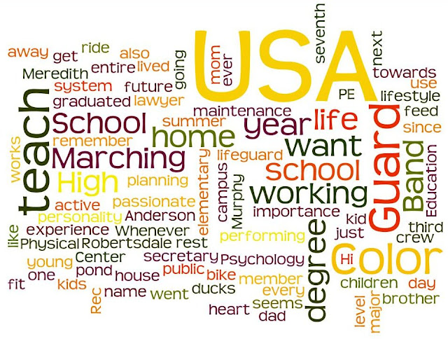 Wordle picture made from the blog post number one paragraph.