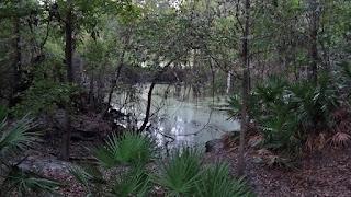 O'Leno State Park - Sinkhole