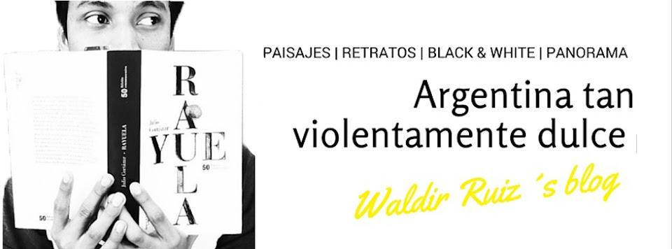 Waldir Ruiz