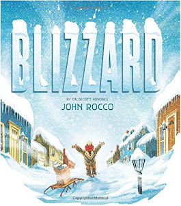 Blizzard - Children's Picture Book