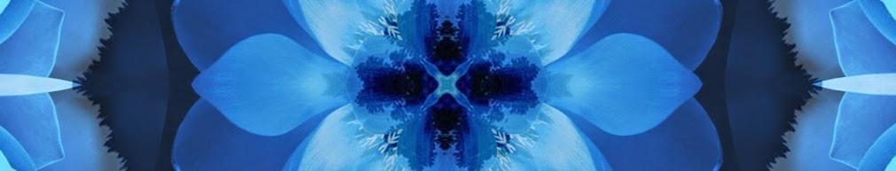 Kaleidoscope Banner