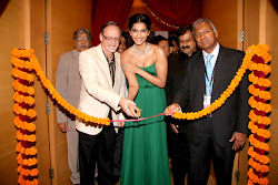 Sonam Kapoor and Simran at Rio Tinto Diamonds at IIJW, INDIA INTERNATIONAL JEWELLERY SHOW 2012, hot sexy legs show, looking sizzling simran, sonam kapoor in green gown