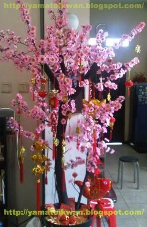 pohon imlek sakura - nusagates