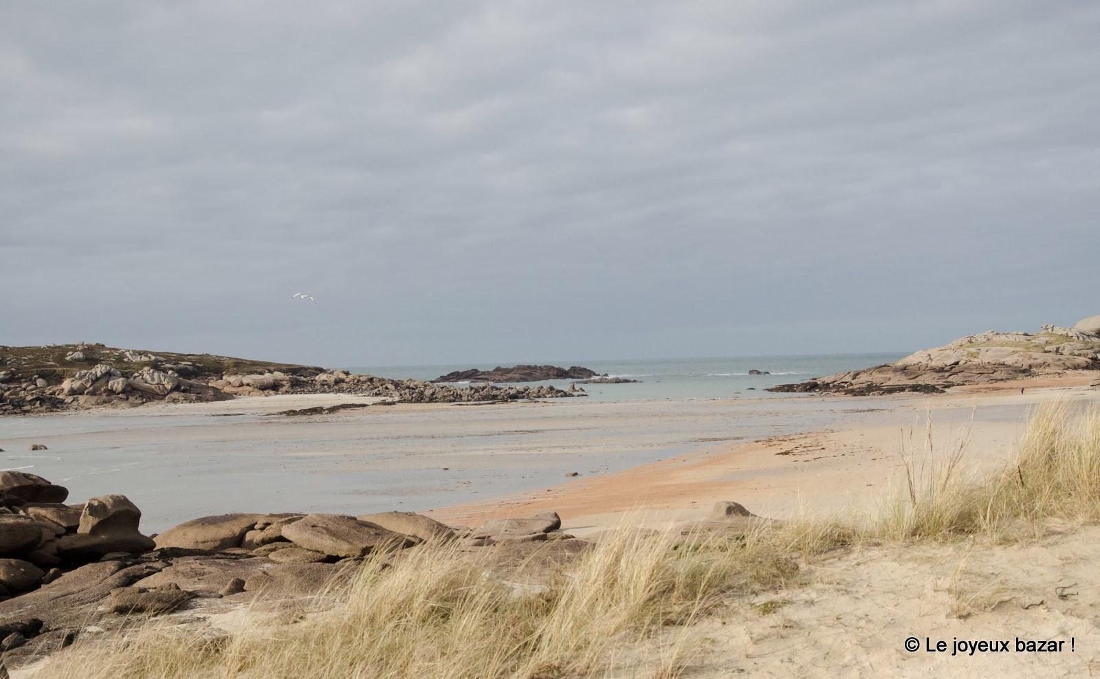 Bretagne - Trégastel