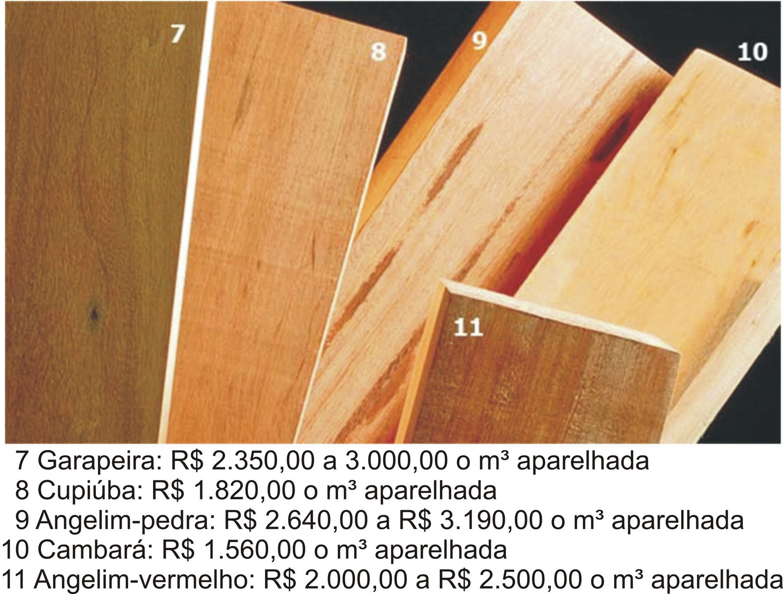 espécies de reflorestamento para equilibrar o consumo de árvores  #B47517 1600x1214
