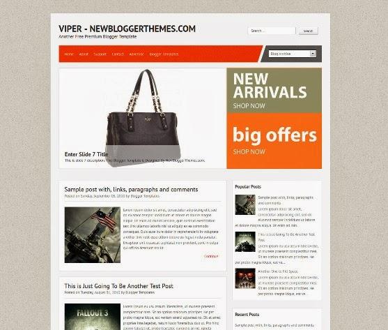 Viper Blogger Template