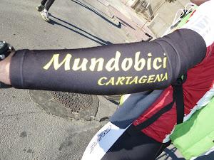 Mundobici