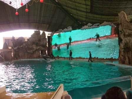 Gelanggang Samudera : Objek permainan di Taman impian jaya ancol yang di gemari