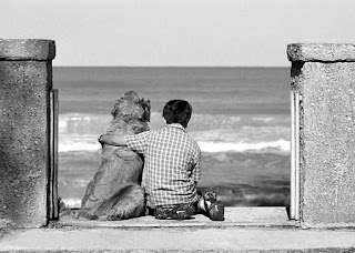 Amizade, Best Friends, Melhor Amigo, Amigo, Friend, Friendship