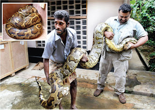 Ukuwela,Mathale,srilanka