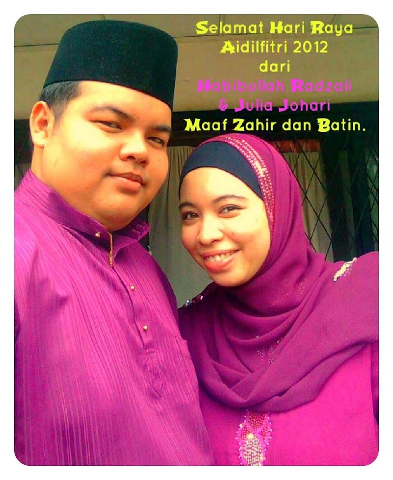 Last Day: Selamat Hari Raya Aidilfitri 2012 ^___________^ V