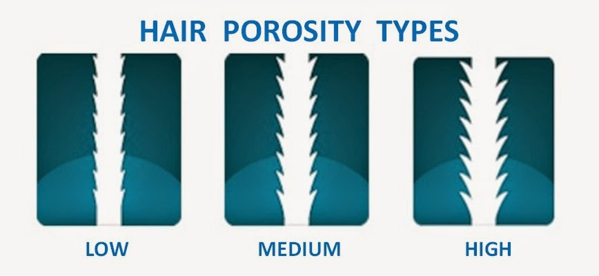 Hair porosity does it matter curlynikki natural hair care hair porosity does it matter urmus Choice Image