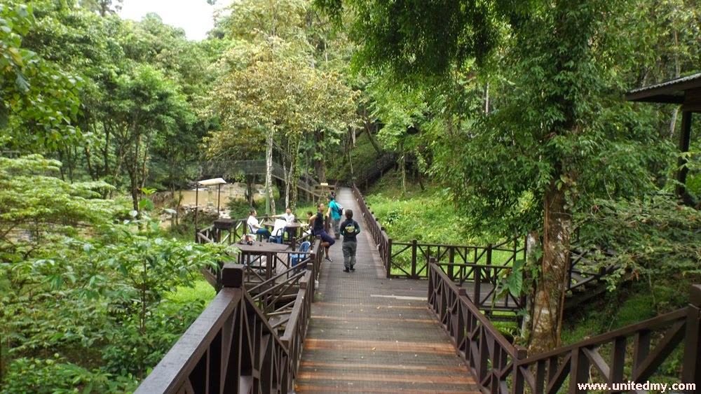 Tabin wildlife Reserve bridge to otter trail and hill lodge