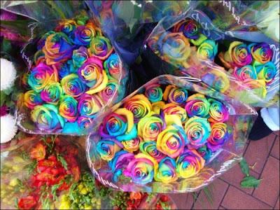 7 'قوس قزح' من أجمل الزهور التي قد تراها   حقن الزهور بصبغات مختلفة