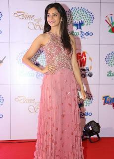 Actress Rakul Preet Singh Latest Pictures in Long Dress at Memu Saitam Dinner with Stars Red Carpet 2