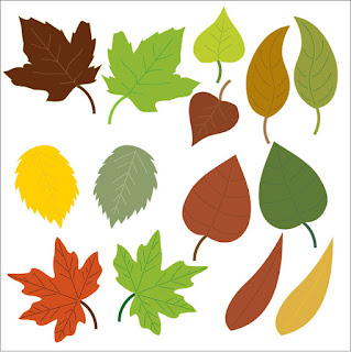 Varieties of Leaves