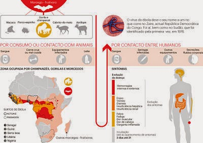 Epidemia da ebola faz parte da guerra de informação