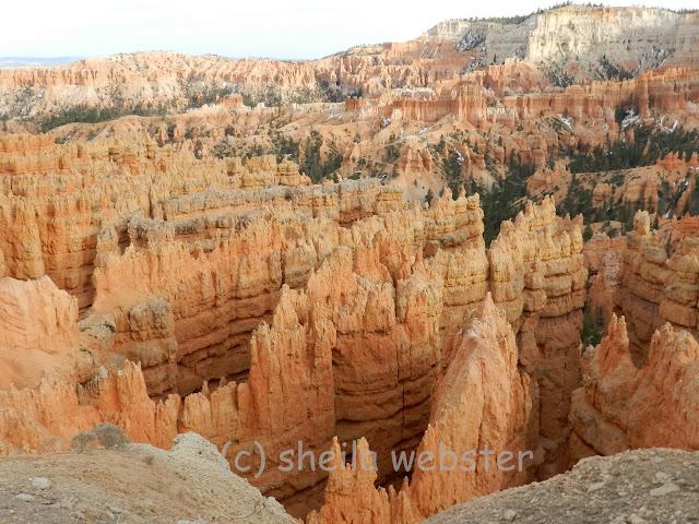 The sunset deepens the color on the hoodoos