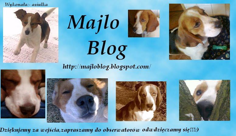 majlo blog