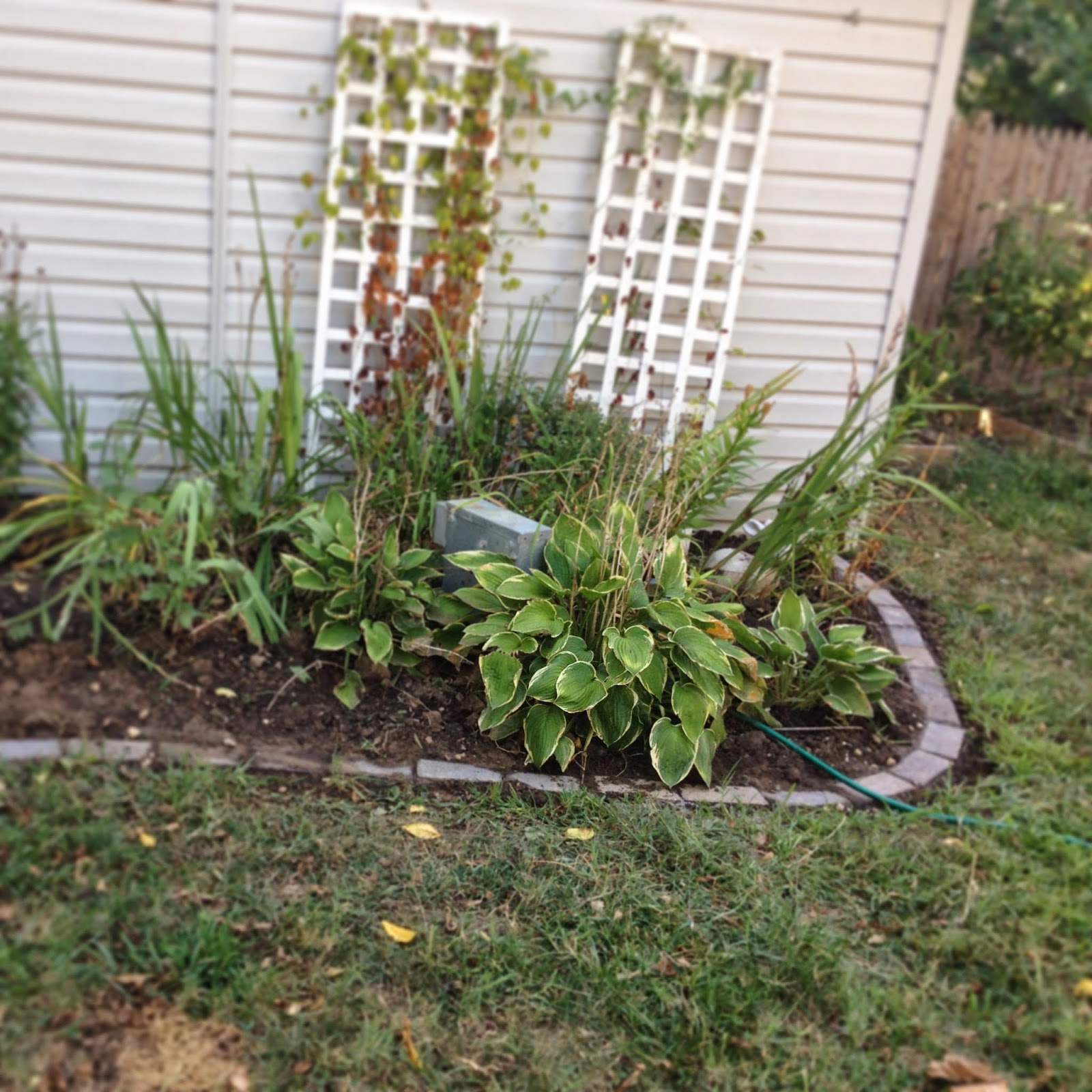Pine Whiff House Putting a Brick Border Around Flower Beds