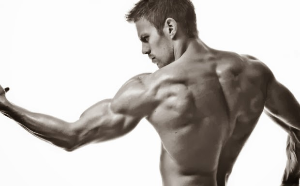 does the somanabolic muscle maximizer really work