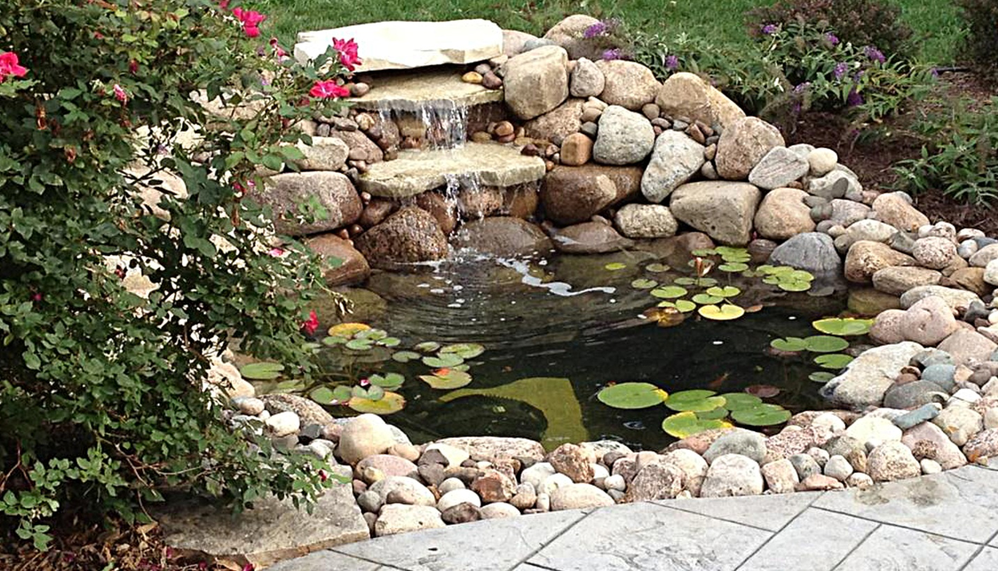 Integrity Landscape Services Atoz Challenge E Is For Ecosystem Ponds