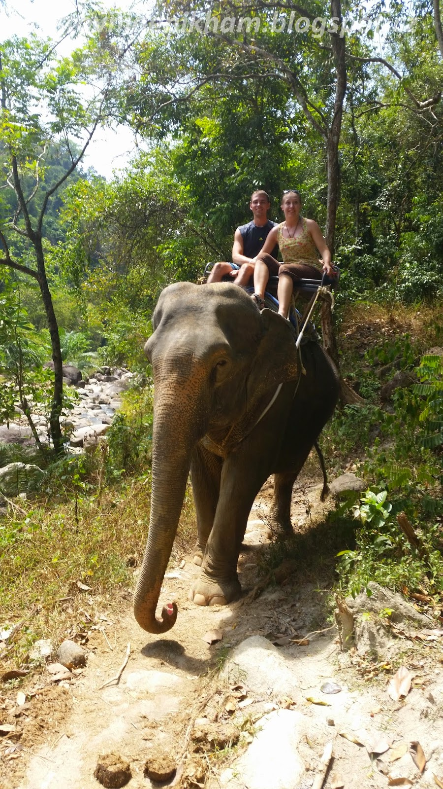 trekking džunglí // elephant trekking