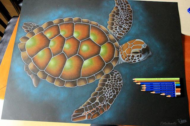 http://somerandomthoughtsandthings.blogspot.pt/2015/07/tartaruga-desenho.html