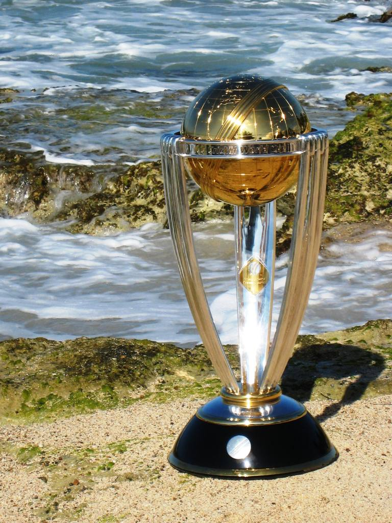 cricket world cup New zealand are on course for a first ever world cup title after a thrilling semifinal victory over south africa, secured off the penultimate ball of the match.