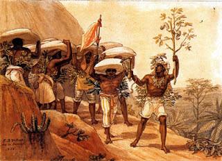 escravos trabalhando em lavoura de café
