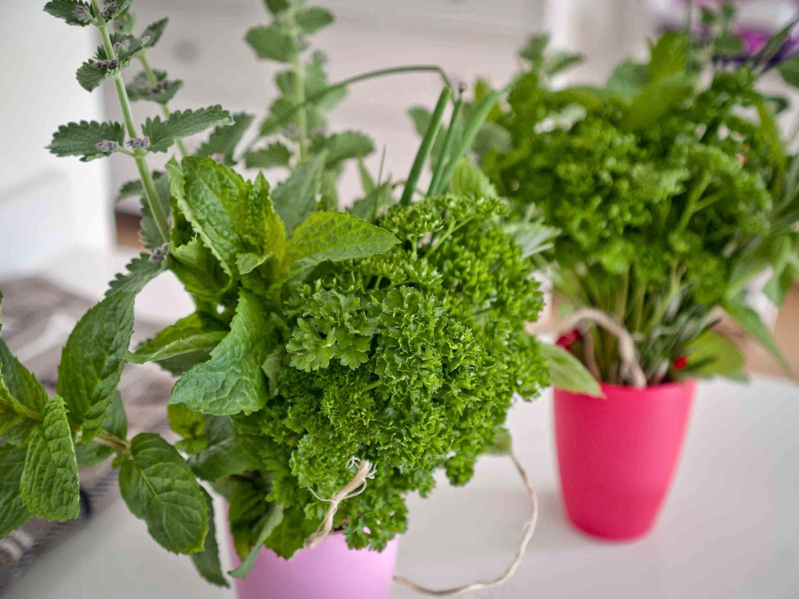 8 tips voor de balkontuin de boon in de tuin - Groenten in potten op balkons ...