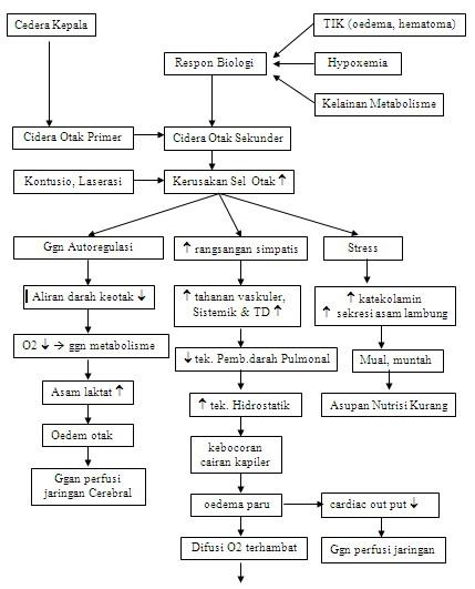 Etiologi Dan Patofisiologi Kanker Kolon Dan Rektum